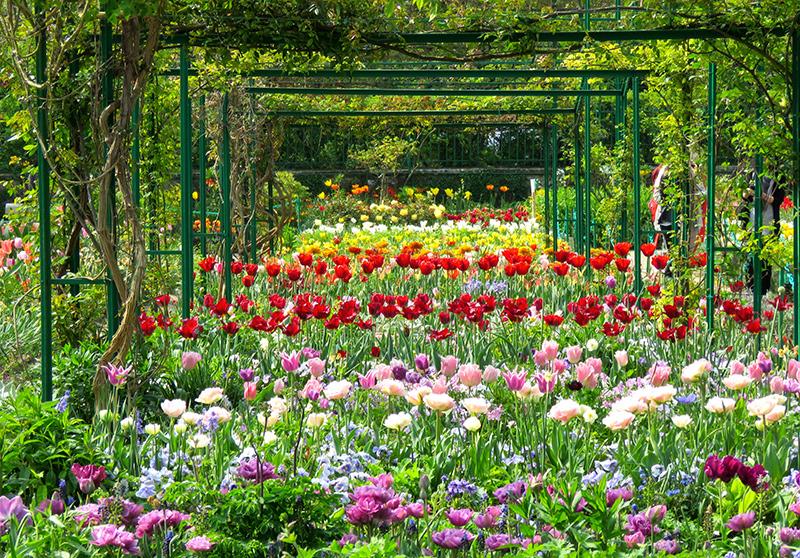 Barwne kompozycje z wiosennych kwiatów w Giverny