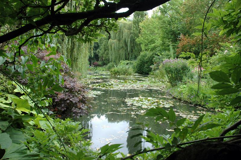 Staw w ogrodzie Clauda Monet'a