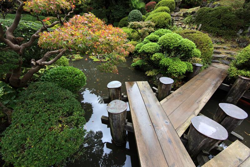 Honma-Museum-s_ogrod japoński