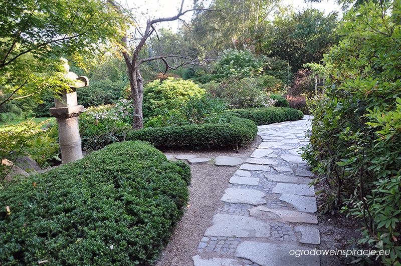 Ścieżka w ogrodzie japońskim