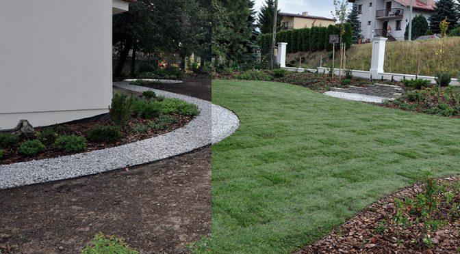 Jak ułożyć trawnik z rolki ?