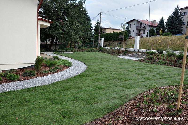 Trawnik z rolki po ułożeniu