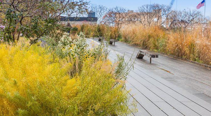 High Line – niezwykły park