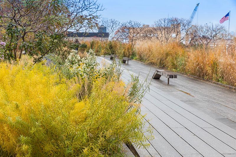 Drewniane podesty spacerowe na High Line