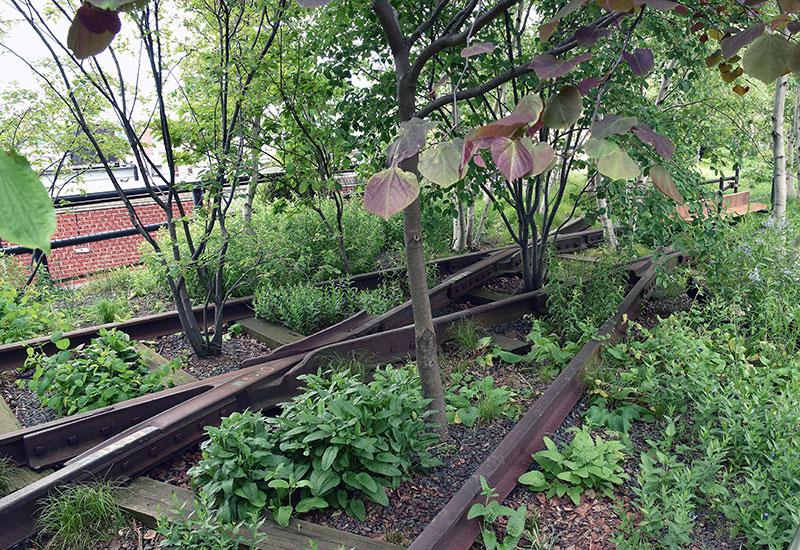 Pozostałości torów kolejowych