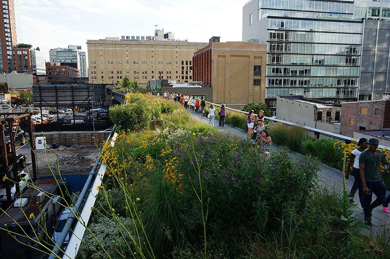 Rabaty Pieta Oudolfa - High Line