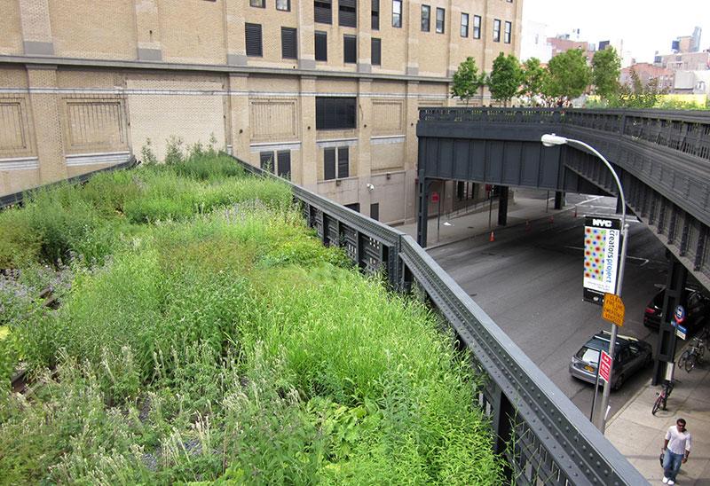 Naturalistyczne rabaty w parku High Line