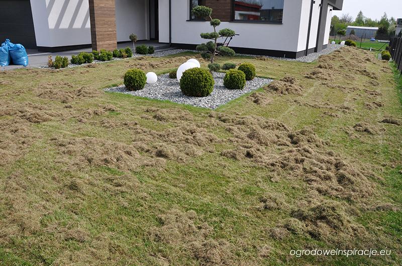 Wiosenna wertykulacja trawnika
