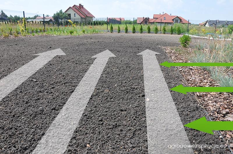 kierunek wysiewu trawy na trawnik