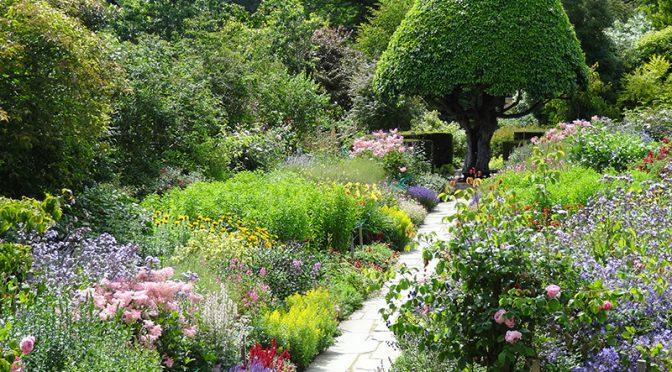 """Lekcje projektowania ogrodów – """"Jedna rzecz"""""""