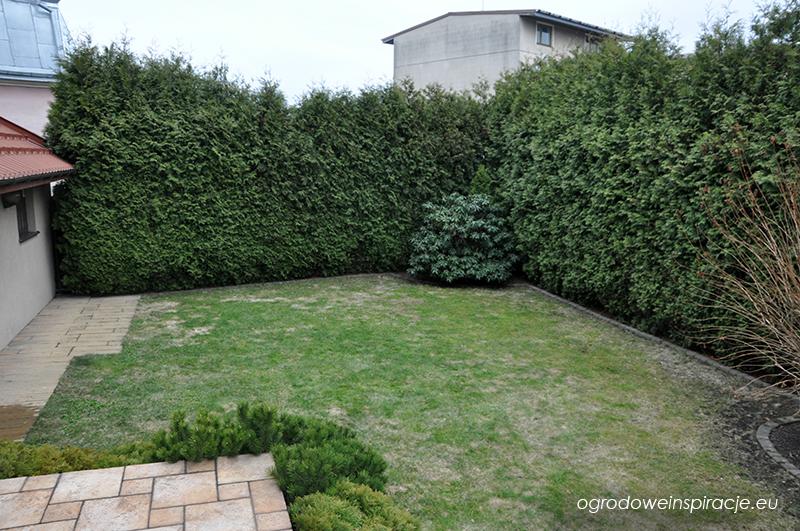 Ogród przed rozpoczęciem prac