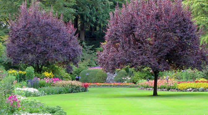 Lekcje projektowania ogrodów – Powtórzenia