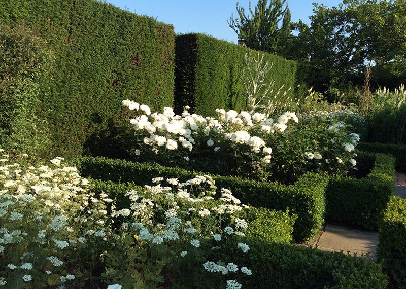 Biały Ogród w Sissinghurst
