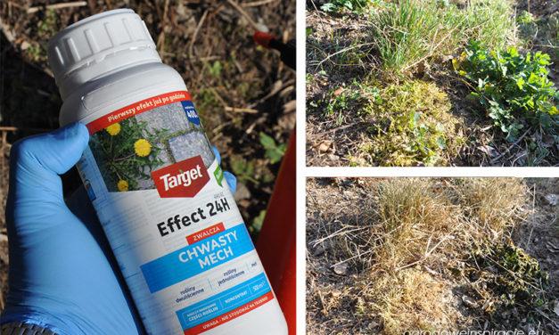 Effect 24H – alternatywa dla Roundupu? Test i recenzja